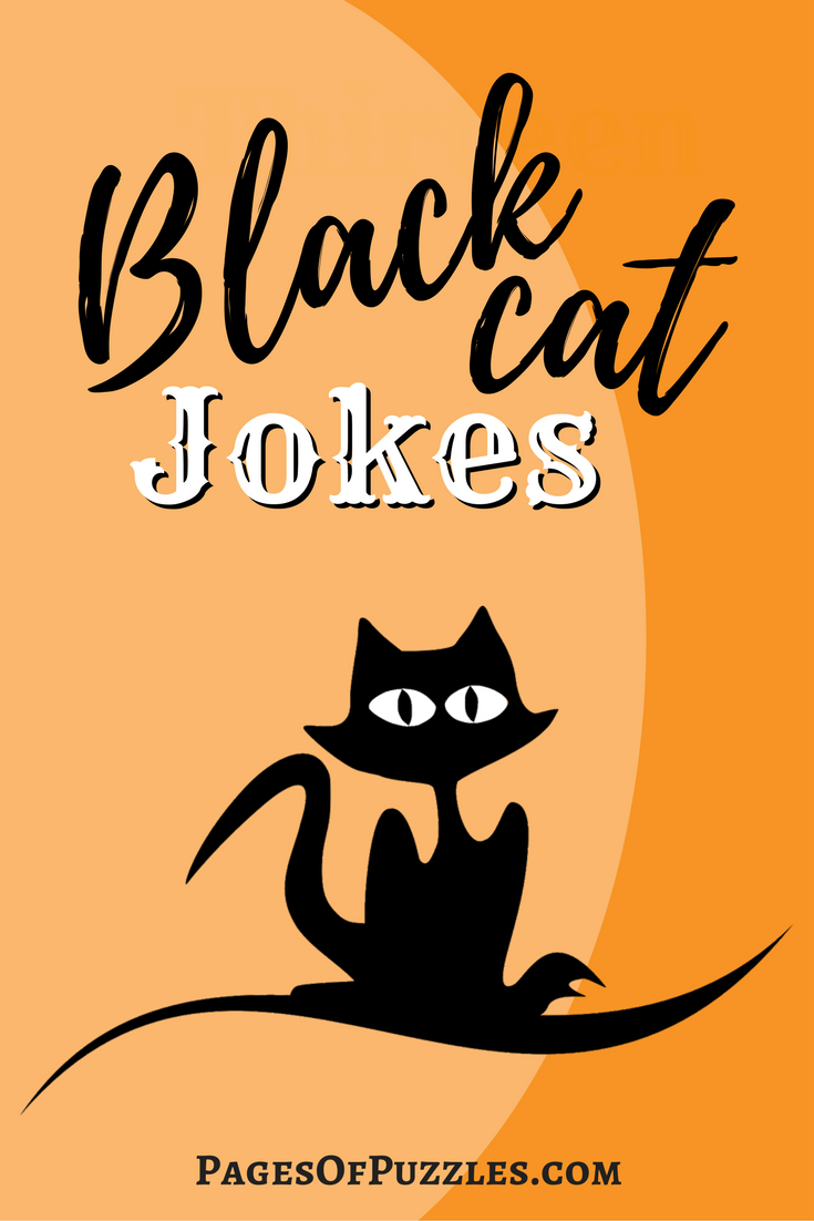 Black Cat Jokes